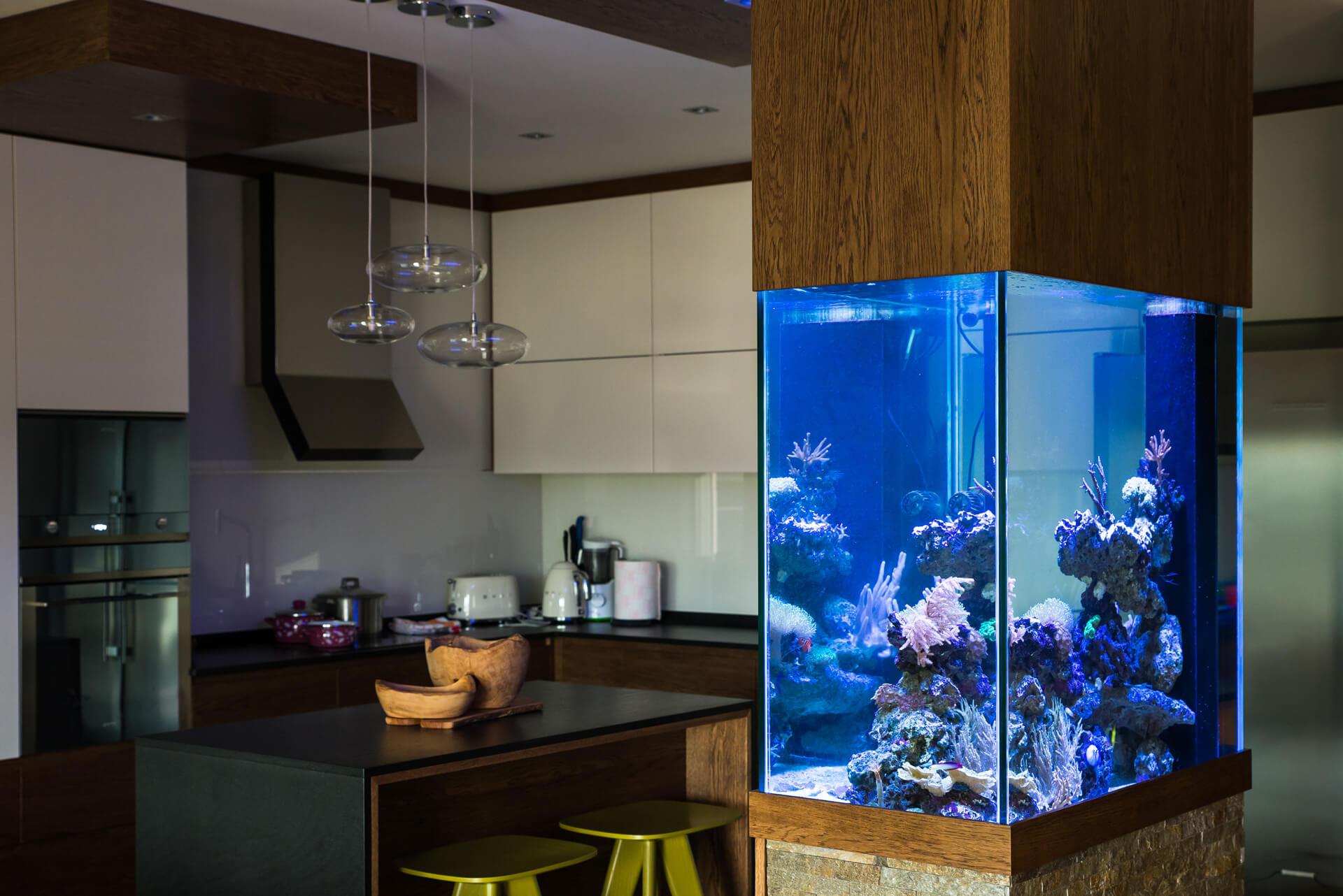 reefroom–103