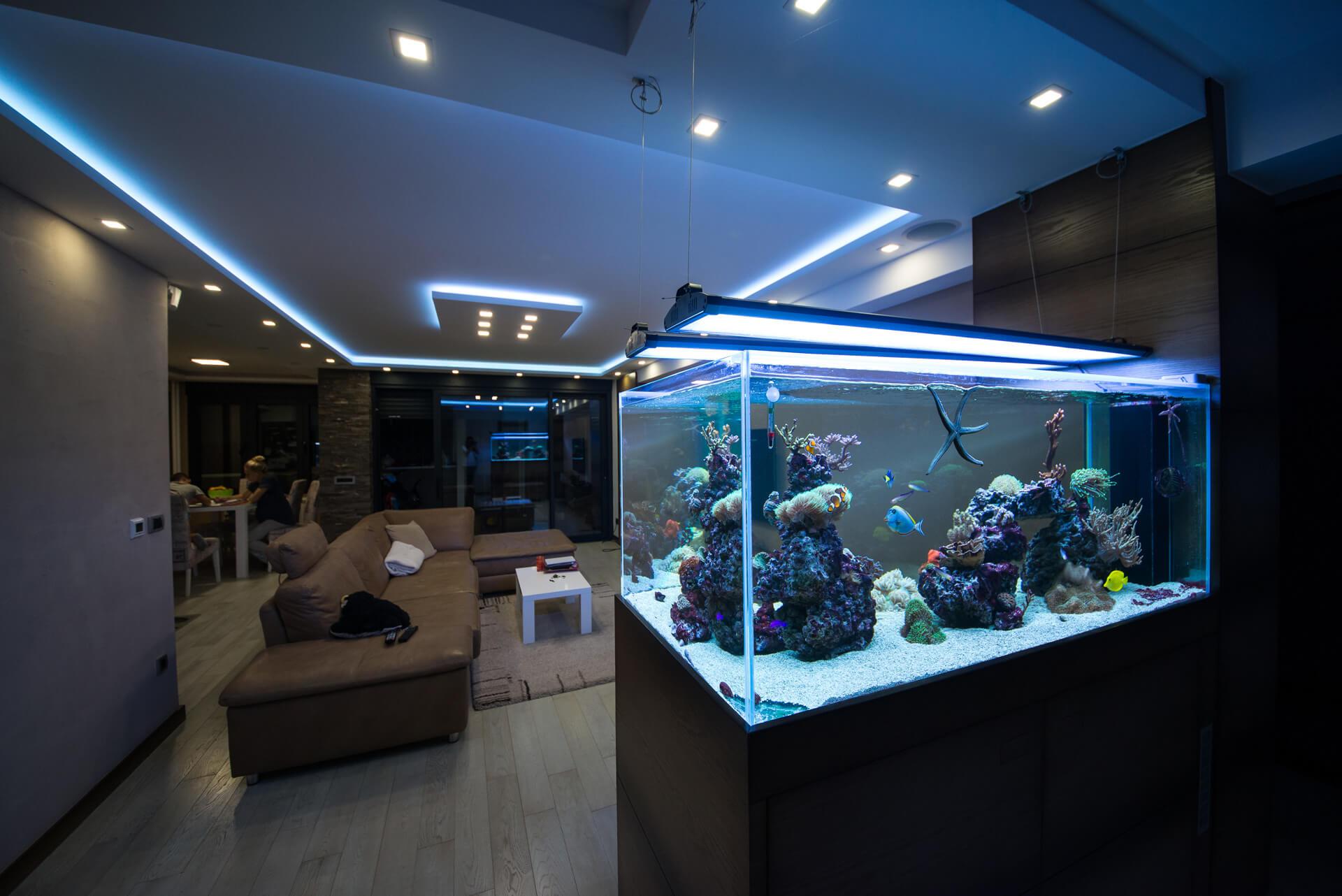 reefroom–211